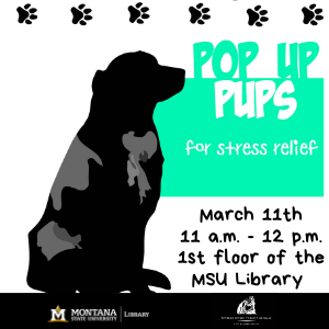 Pop-Up Pups for stress relief, in the Library!