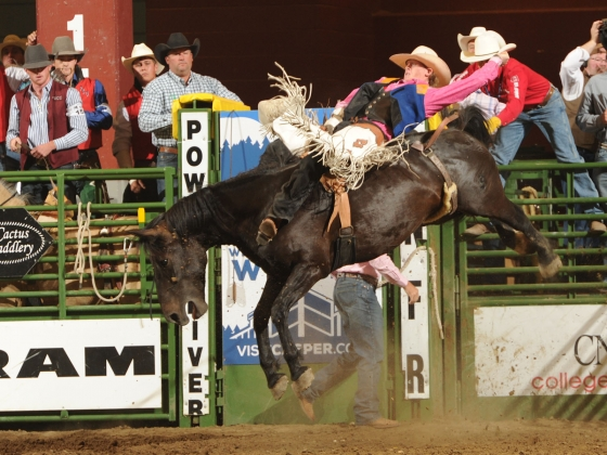 2016 Montana State University Spring Rodeo Thursday