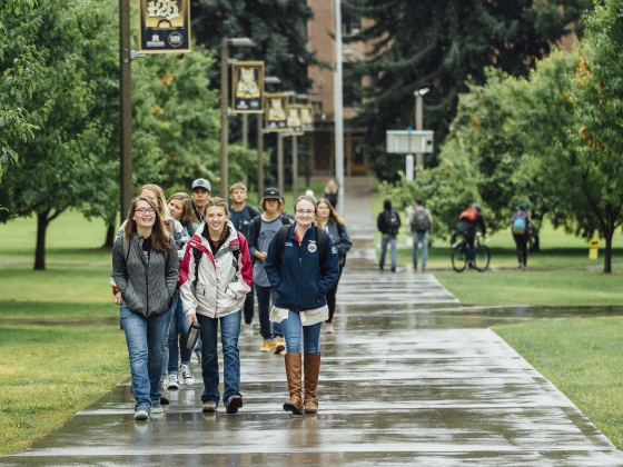 Students walk in the rain on the first day of fall semester 2018 at Montana State University. | Adrian Sanchez-Gonzalez/MSU