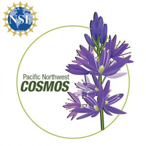 NSF Cosmos