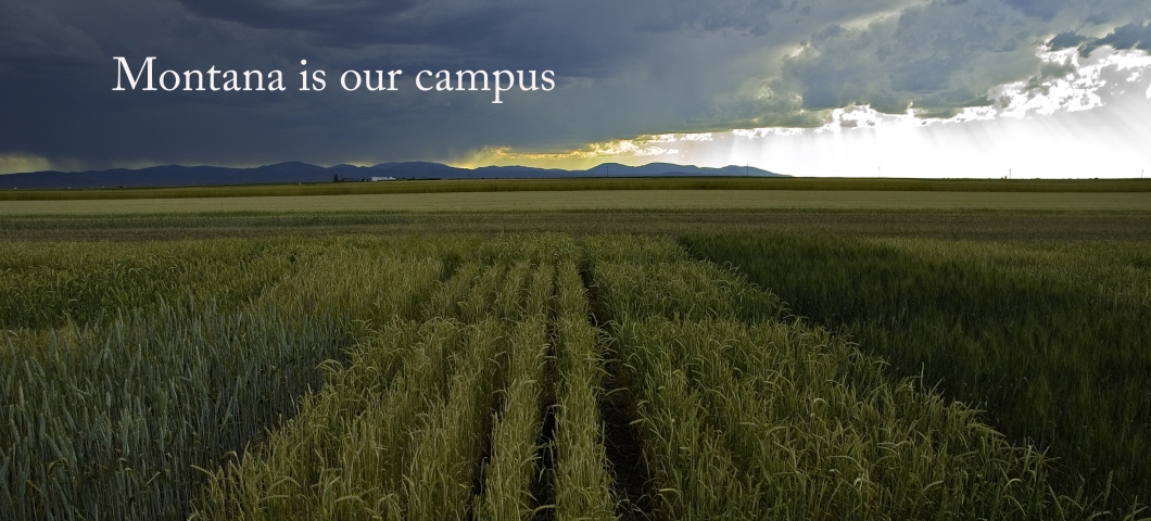Montana is our campus