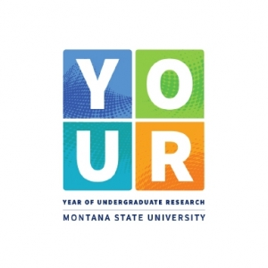 Year of Undergraduate Research
