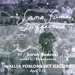 Same Same Different at the Waller-Yoblonsky Gallery
