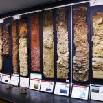 The newly remodeled and rededicated Hayden Ferguson Soils Teaching Laboratory features more than 40 soil monoliths, or preserved vertical slices of soil profiles with their varied rock content, colors, textures and structures for each soil layer. Photo courtesy of the MSU College of Agriculture.