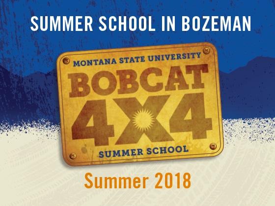 Bobcat4x4 |