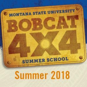 Bobcat4x4