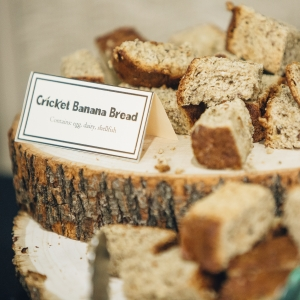 Photo of cricket banana bread on a bread board.