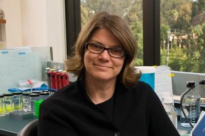 Dr. Renee Reijo-Pera