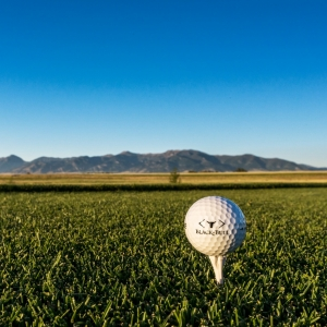 Montana State University College of Business Golf Tournament