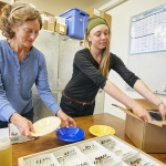 Two women pack boxes with bee-collecting supplies to send to rural schools across Montana.