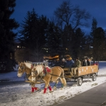 Members of the MSU Driving Club delivered treats to Spirit Plaza by wagon for Lights on Montana Hall festivities. MSU photo by Kelly Gorham