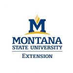 MSU Extension logo in color