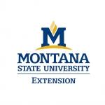 MSU Extension logo in color