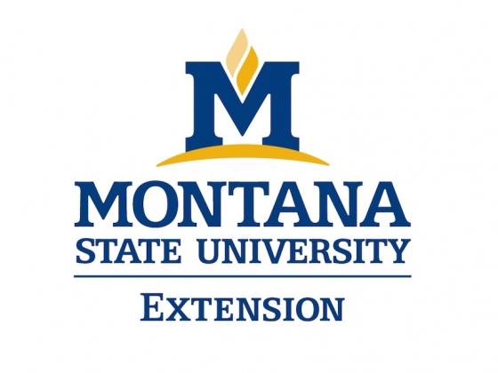 MSU Extension logo in color |