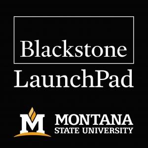 MSU LaunchPad