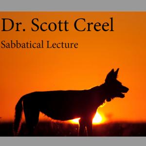 Scott Creel Sabbatical Lecture