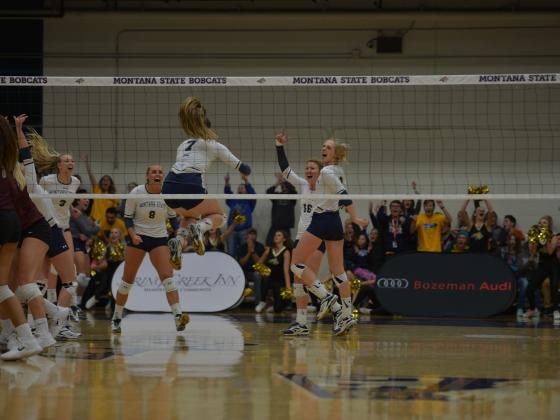 MSU Volleyball