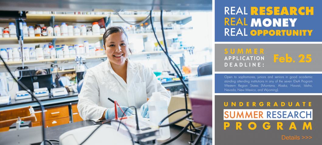 Undergraduate Summer Research Program