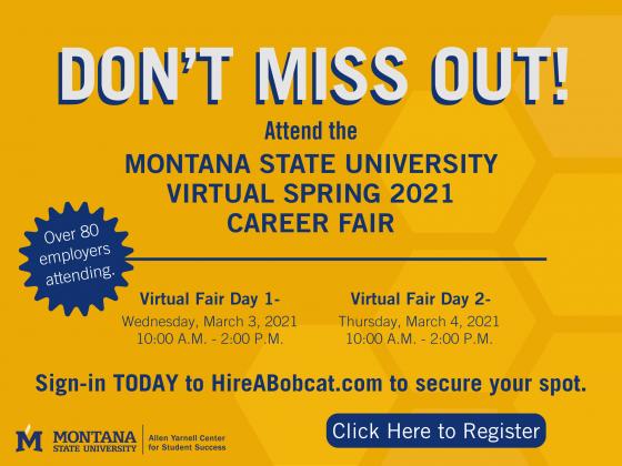 Virtual Career Fair Spring 2021 |