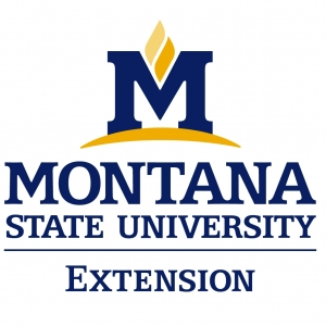 MSU Extension logo