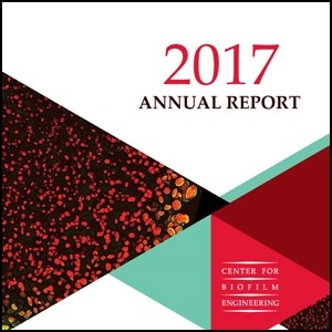 CBE 2017 Annual Report Cover