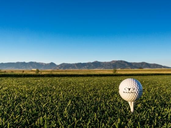 Black Bull golf ball on a tee in the grass | Image courtesy of Black Bull