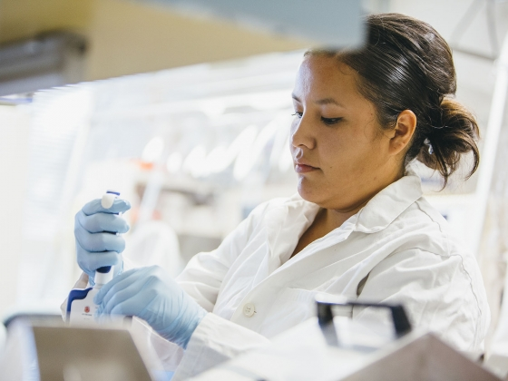 Trisheena Kills Pretty Enemy, a senior studying microbiology at Montana State University, works in Seth Walk's lab in Cooley Hall on Friday, Sept. 16, 2016, researching Clostridium difficile Infection. MSU Photo by Adrian Sanchez-Gonzalez | MSU photo by Adrian Sanchez-Gonzales