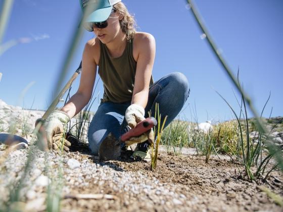 Civil Engineering Students Build Wetland for National Fish Hatchery | MSU Photo by Adrian Sanchez-Gonzalez