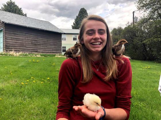 A young woman in a red sweater holds three baby chickens | Photo courtesy of Lexi Kyro