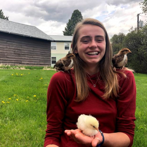 A young woman in a red sweater holds three baby chickens