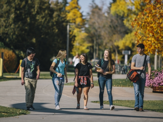 A group of four students walk across campus in the fall. |