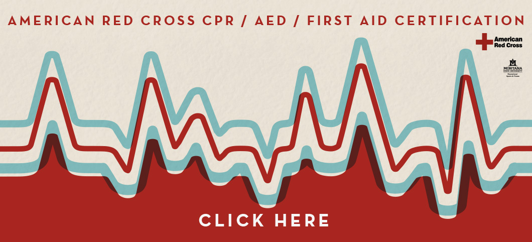 American Red Cross Cpr Aed Firstaid Certification Classes