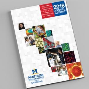 CBE 2016 Annual Report