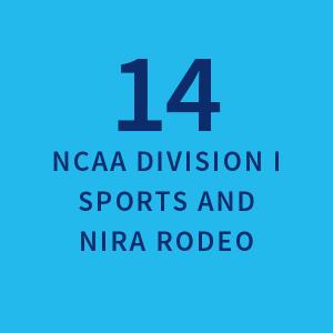 14 NCAA Division I Sports and NIRA Rodeo |