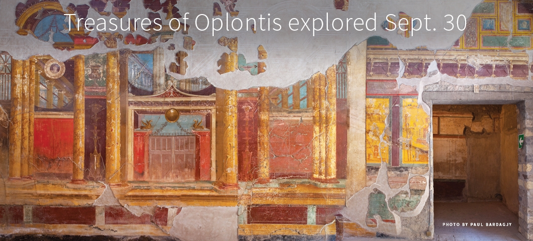 Oplontis artifact |