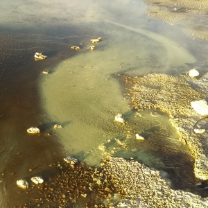 Dragon Spring in Yellowstone National Park