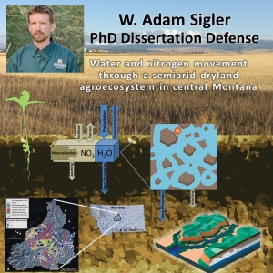 Sigler Dissertation