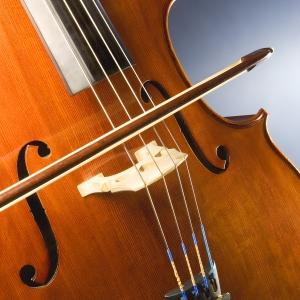 Montana Chamber Music Society