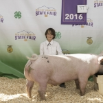 Local 4-H participant Misa Smetana is pictured with his pig Montana State University purchased at the recent Gallatin County Fair. Submitted photo.