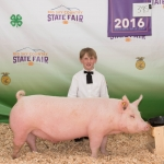 Local 4-H participant Will Baeth is pictured with his pig Montana State University purchased at the recent Gallatin County Fair. Submitted photo.