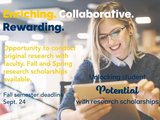 Undergraduate Research Scholarships