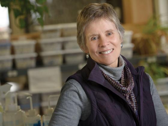 Cathy Whitlock | Kelly Gorham