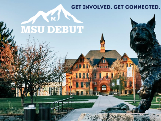 MSUdebut |