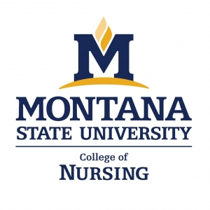 College of Nursing News Logo