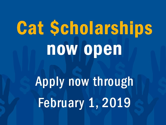 Cat Scholarships |