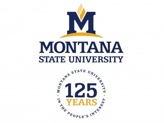 125th Anniversary logo |