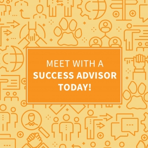 Meet with a success advisor