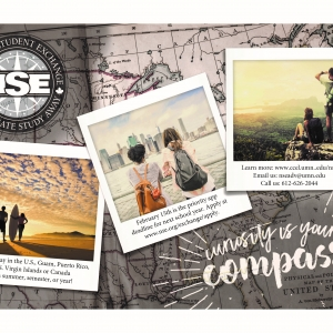 NSE Curiosity is Your Compass