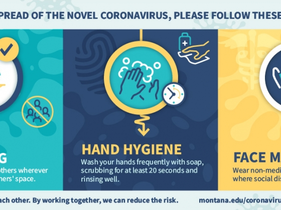 To slow the spread of the novel coronavirus, please follow these precautions: social distancing —keep 6 feet away from others wherever possible and respect others' space; hand hygiene —wash your hands frequently with soap, scrubbing for at least 20    Alison Gauthier/MSU