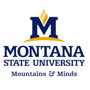 MSU Mountains and Minds logo
